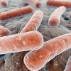 Tuberculosis y sífilis, dos males que siguen al acecho
